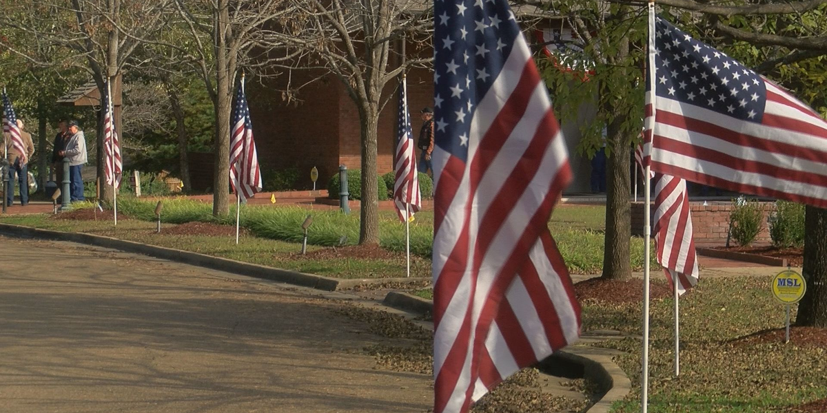 YEAR OF THE VETERAN: Here's how you can volunteer to help veterans in the Midlands
