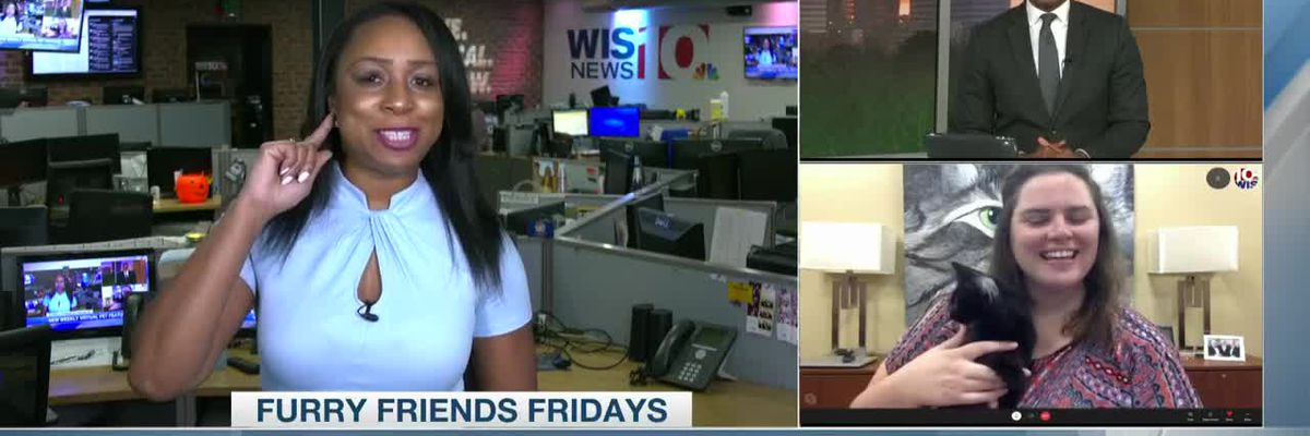 Furry Friends Friday launch on WIS Sunrise