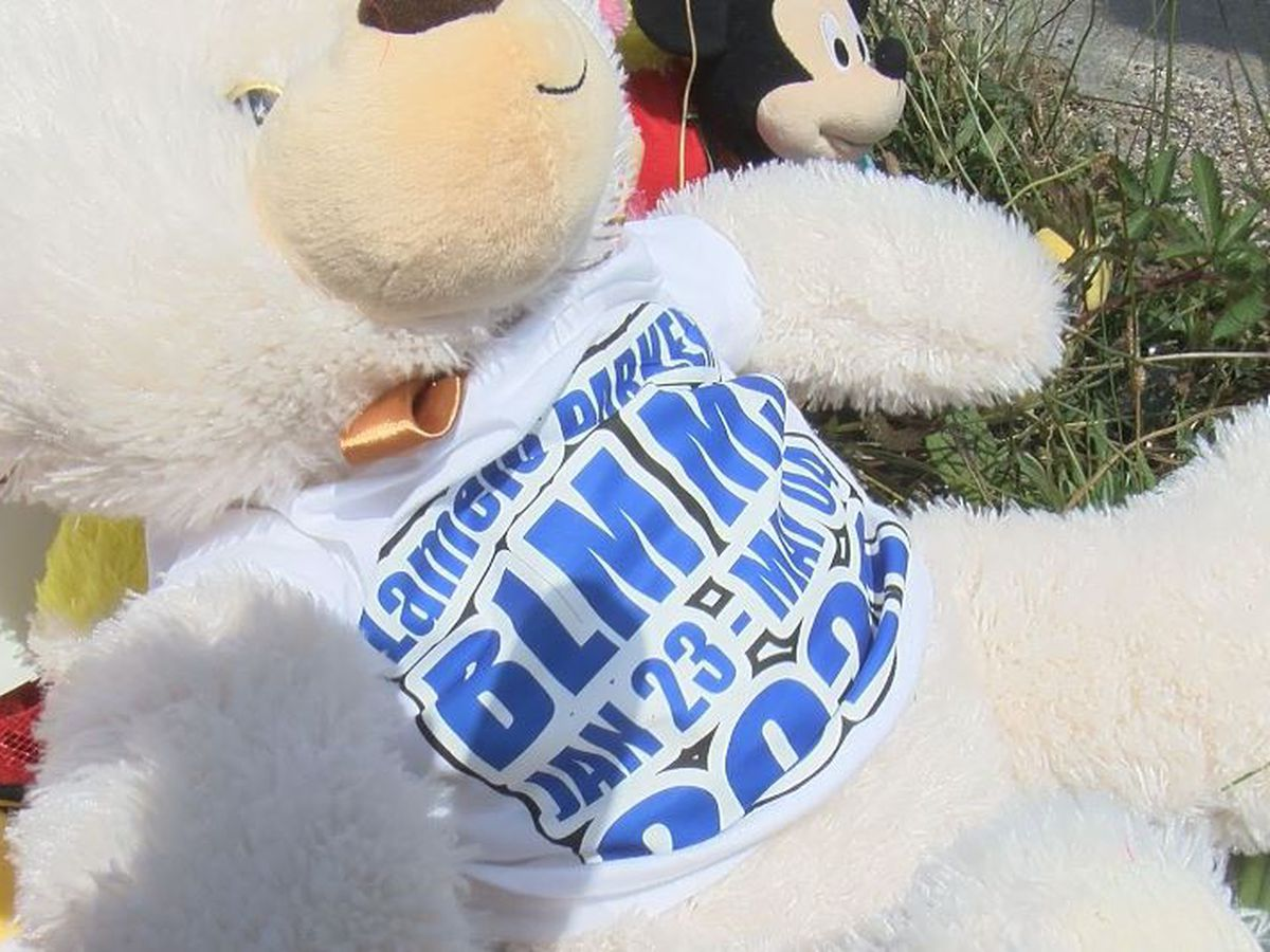 BLM Mississippi protests killing of infant in I-10 shootout