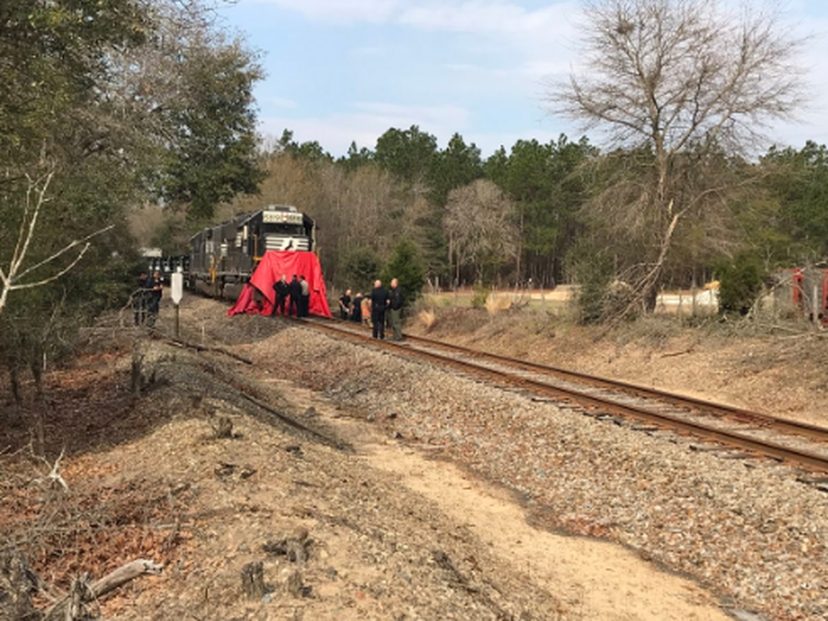 LCSD investigating after pedestrian hit, killed by train near Chapel Rd.