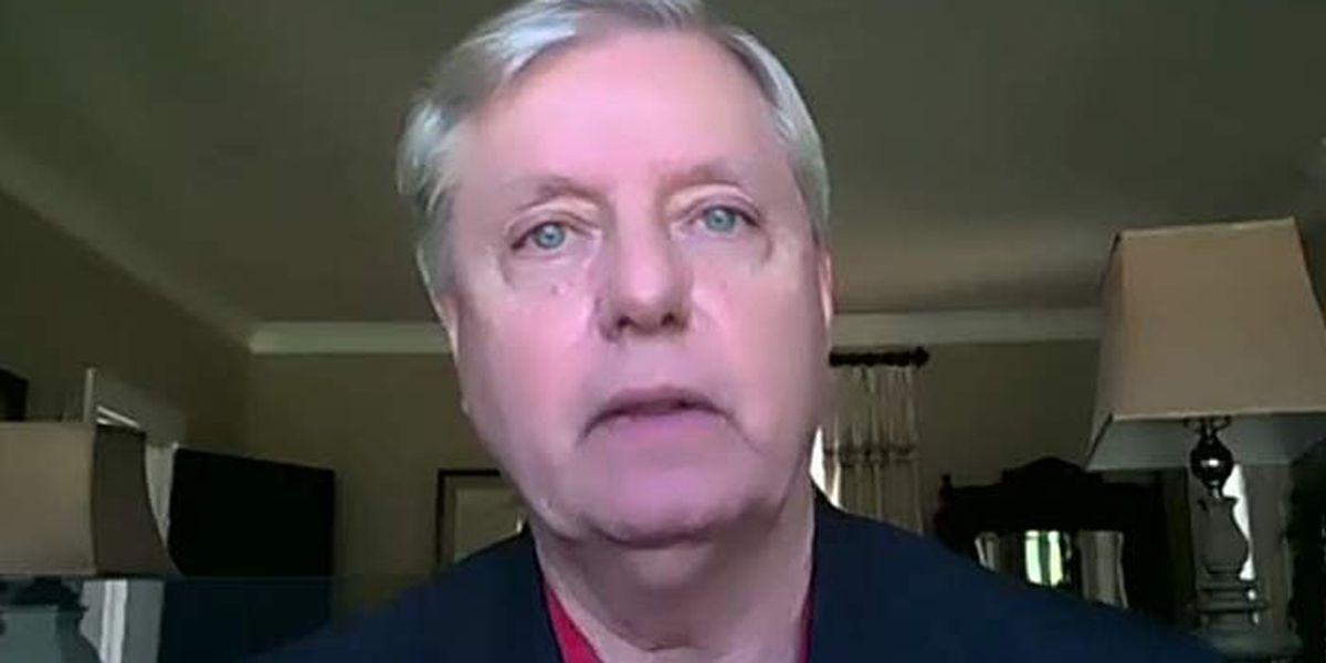 Graham: Senate campaign created 'Red Wave' across South Carolina