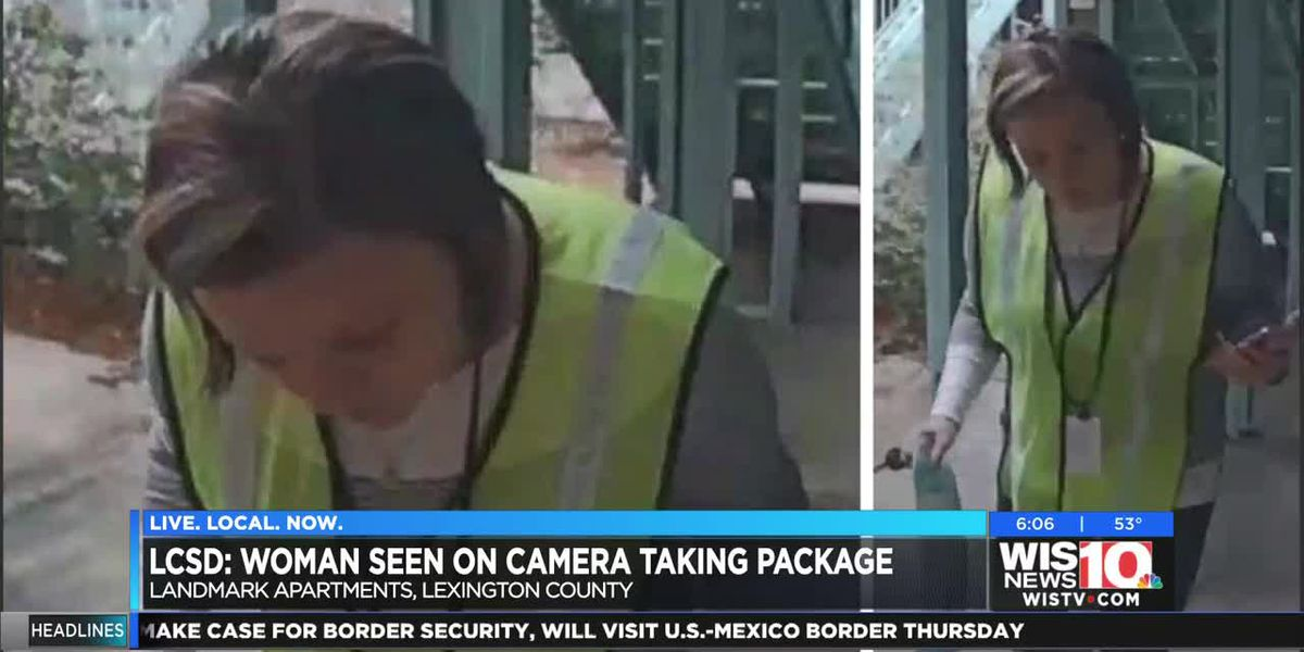 LCSD looking for package thief