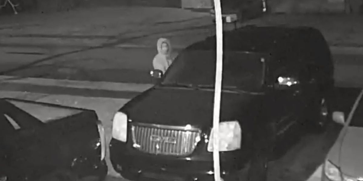 Richland County looking for suspect who stole jewelry, handgun from vehicle