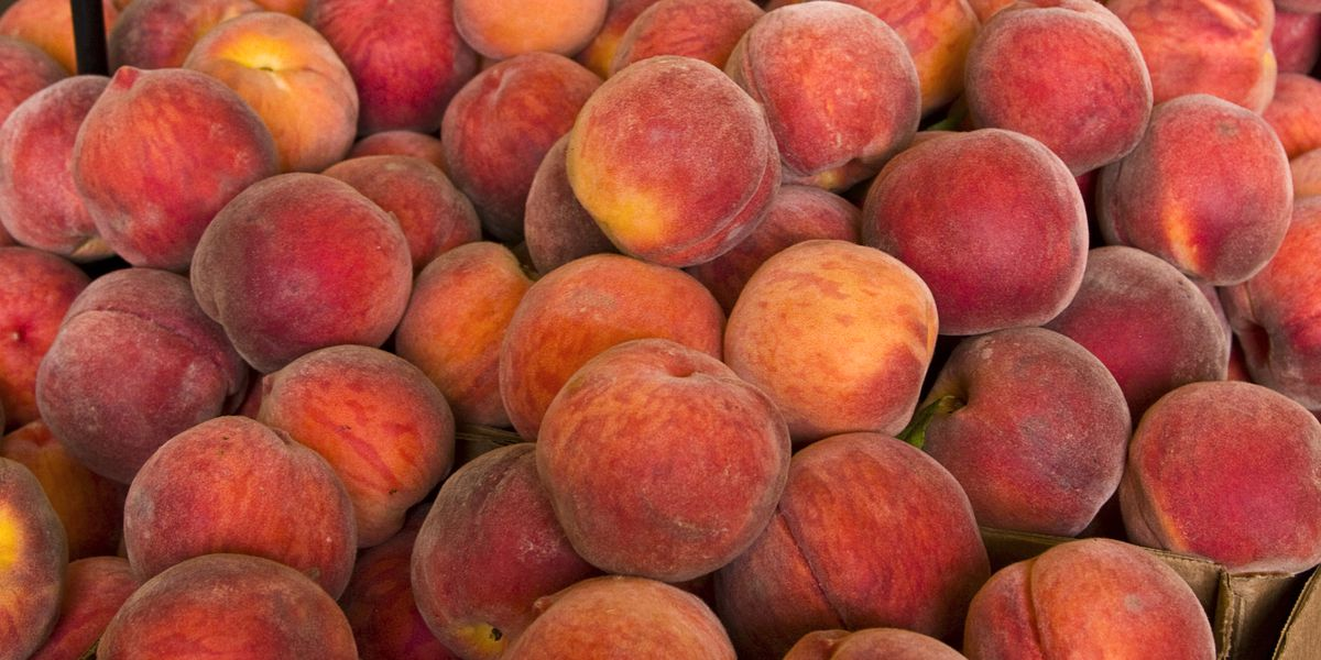 Fresh peaches, plums, nectarines sold nationwide recalled due to listeria concerns