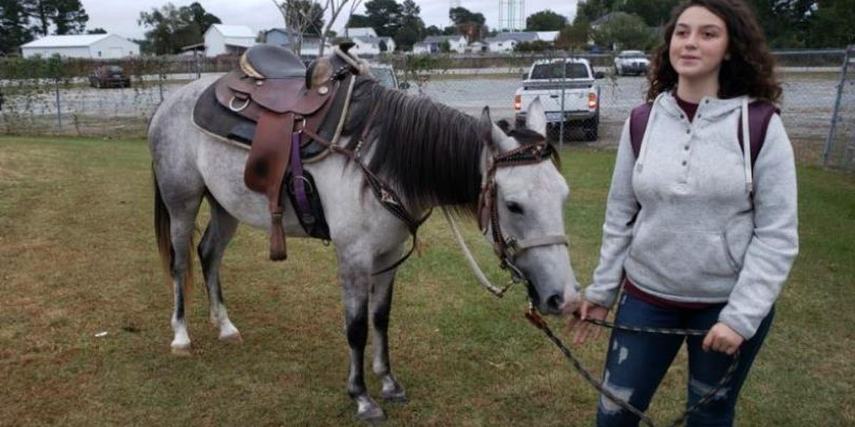 Student rides horse to school after missing bus in NC