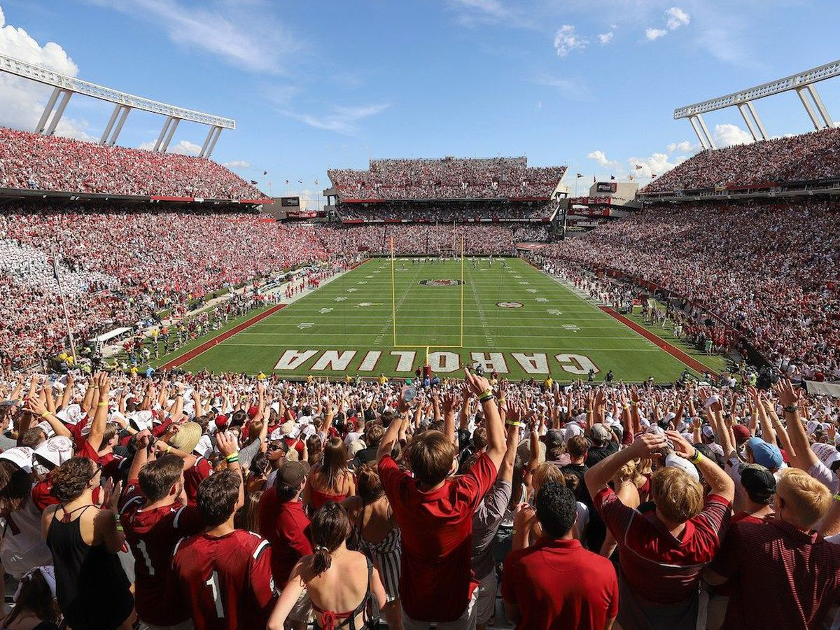 More than $1 million in upgrades approved for Williams-Brice