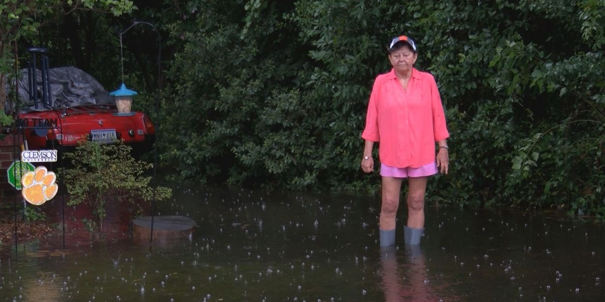 Drainage problems turn Cayce yards into a swamp