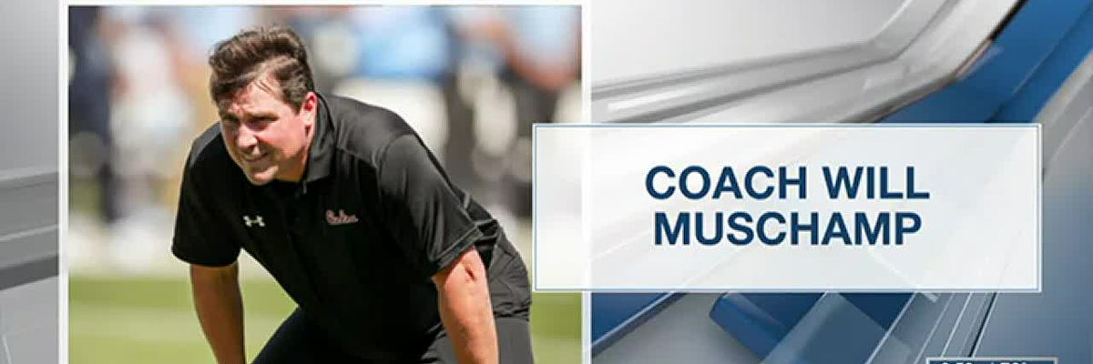 WIS Today: Coach Will Muschamp talks about Feed the Heros Foundation for Midlands healthcare workers