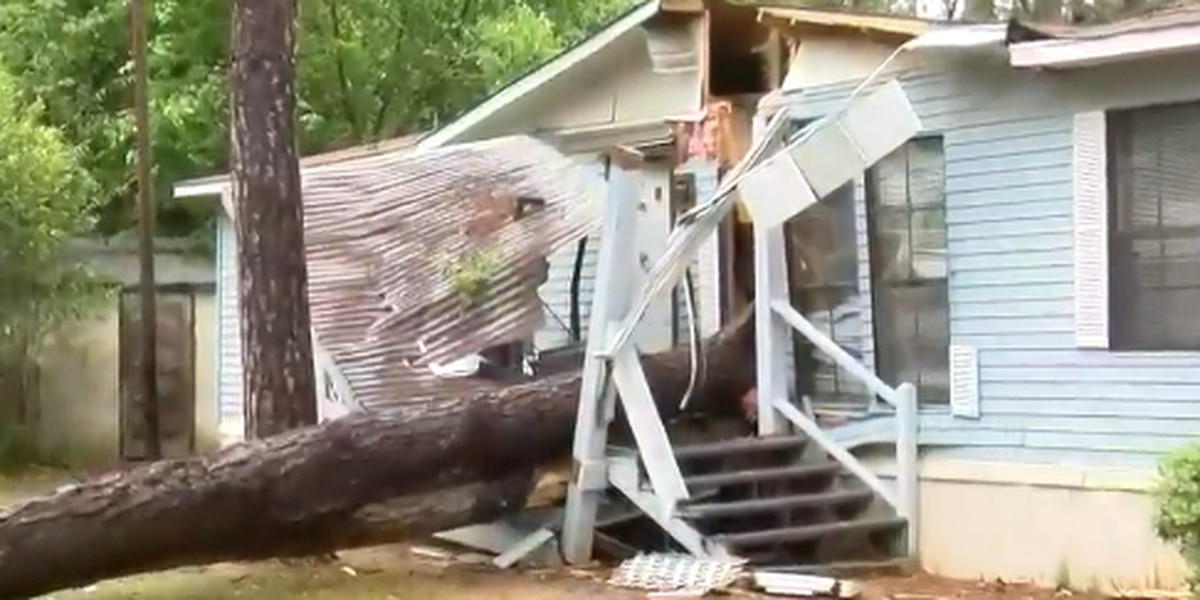 Child seriously injured after tree falls onto home in Sumter