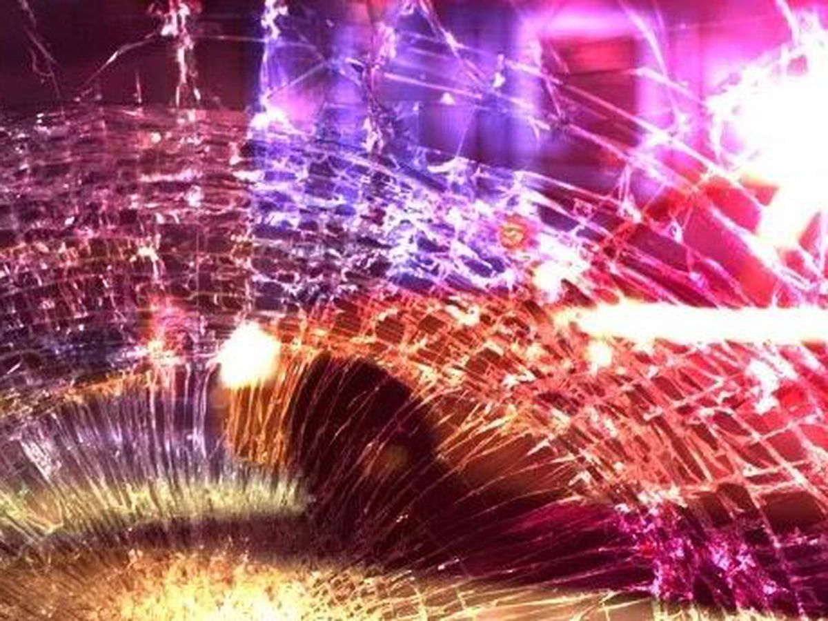 Driver dies after truck hits tree in Lexington County