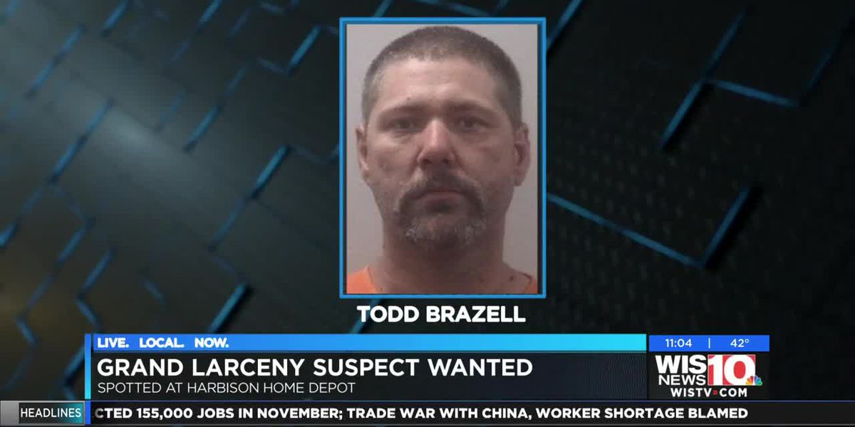 Man wanted by LCSD for grand larceny