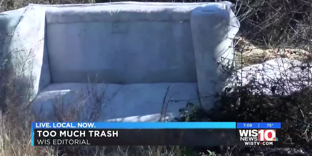 My Take: Who is going to do something about the trash along SC roadways?