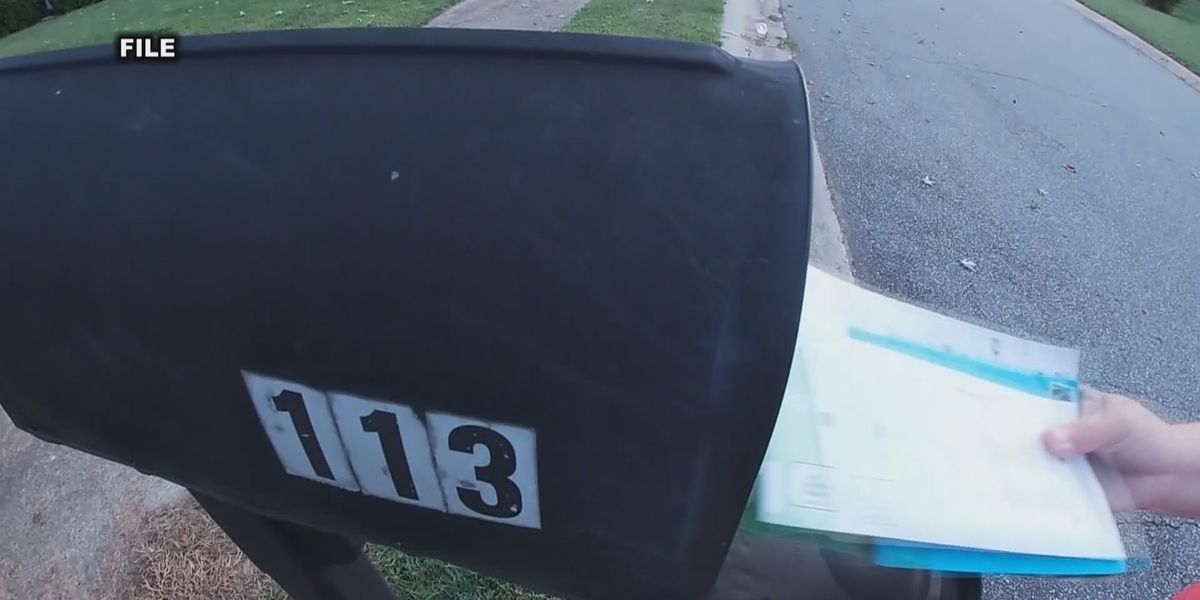 Absentee mail-in ballot data shows 4,000 ballots not counted due to failed requirements