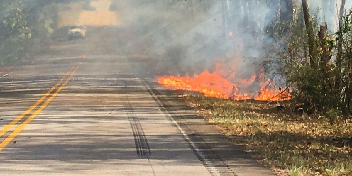 Officials respond to brush fire near Interstate 26