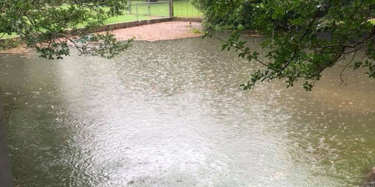 FIRST ALERT: Heavy rain and storms could cause street flooding into Saturday