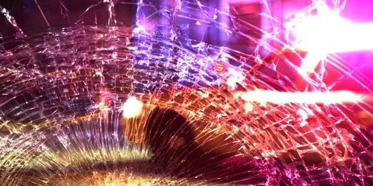 Driver died after truck hits tree in Lexington County