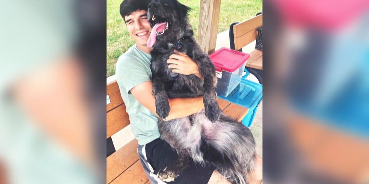 Friends continue search for missing Saluda man