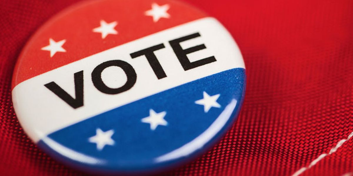 Voter registration deadline for Democratic presidential primary is Jan. 30