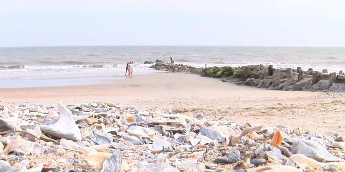 Edisto Beach reopening to the public on Friday