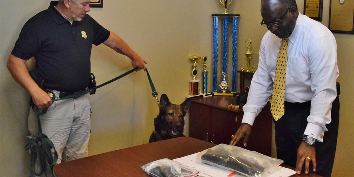 K-9 sniffs out $250K worth of heroin confiscated on I-26