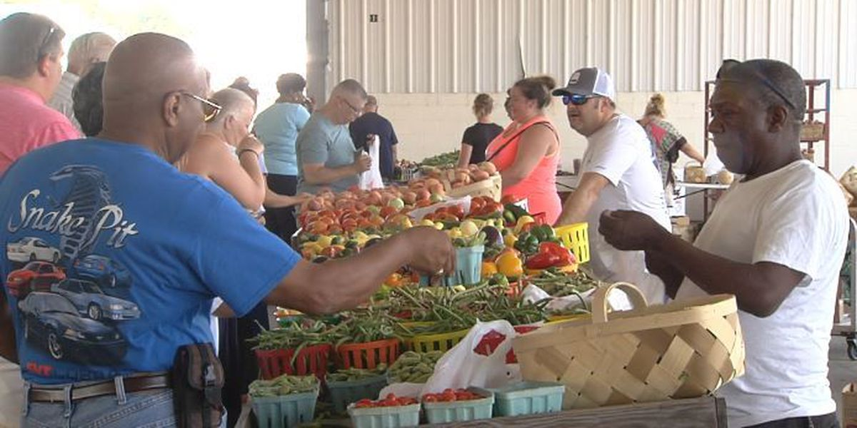 Families enjoy fun in the sun for Family Ag Day