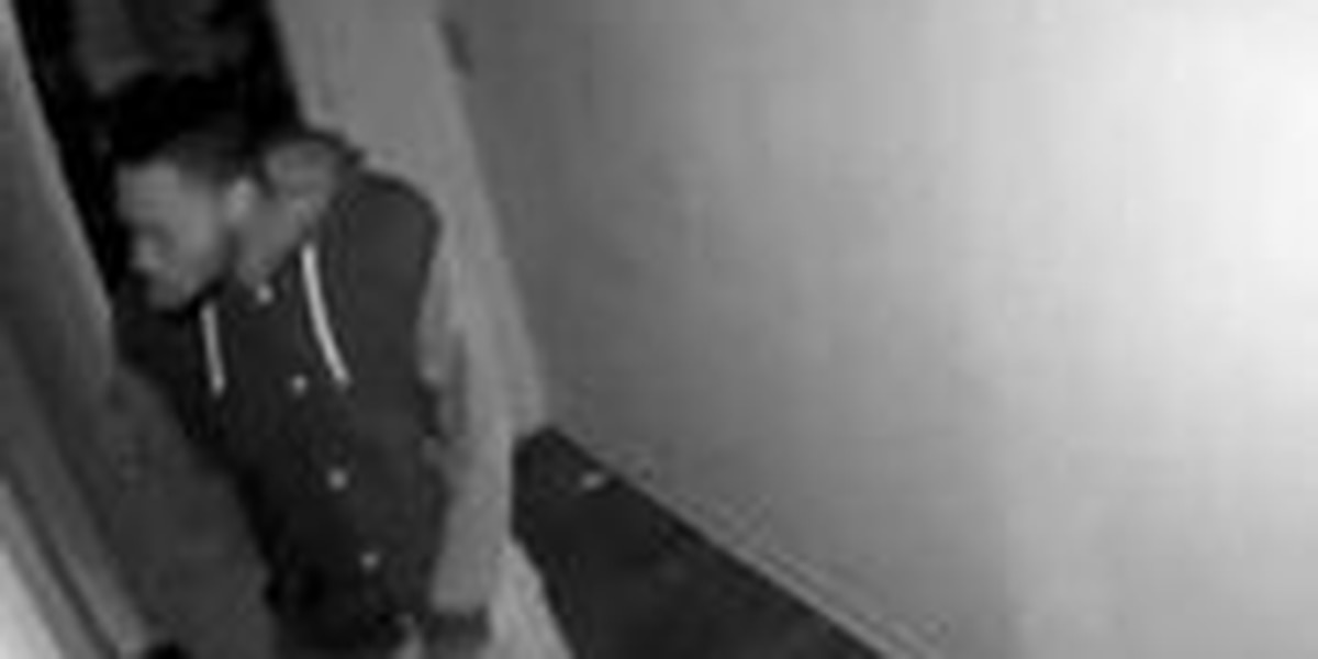 Lexington County detectives seek identity of burglary suspects