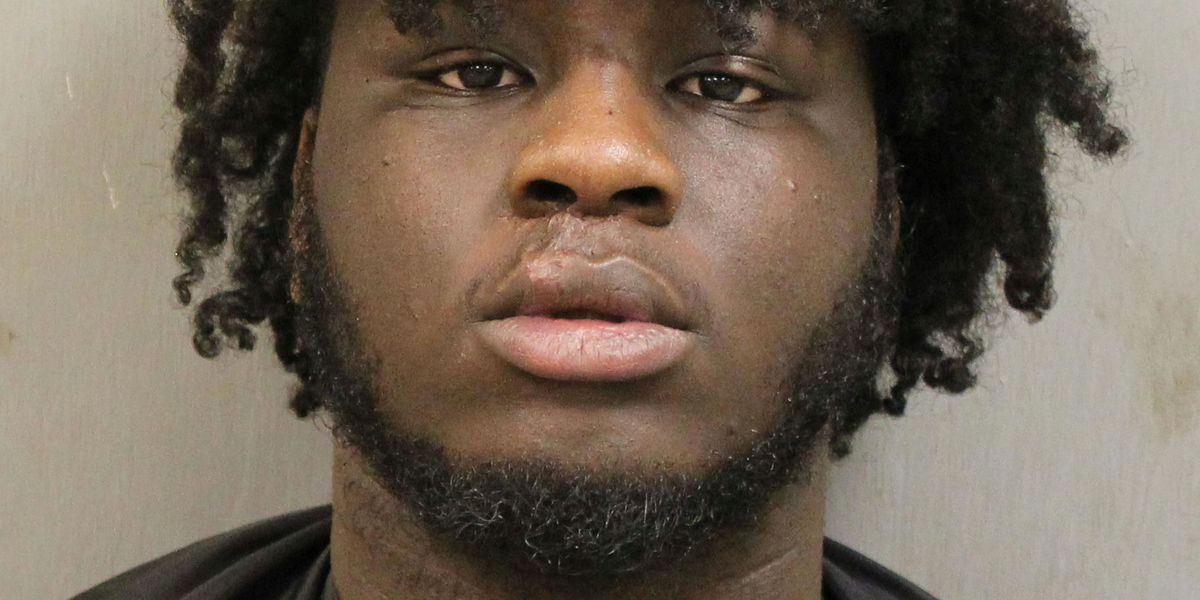 Midlands car thief arrested after 2-county pursuit