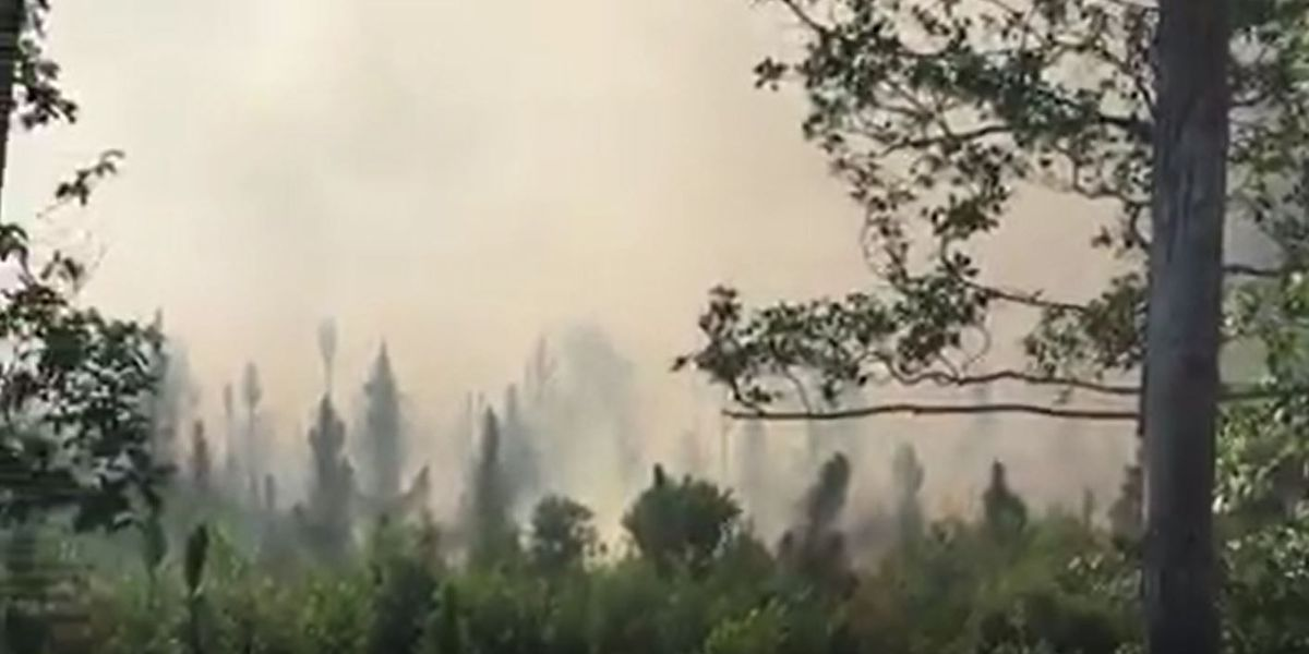 60-acre fire could produce smoke in Lexington County over several days