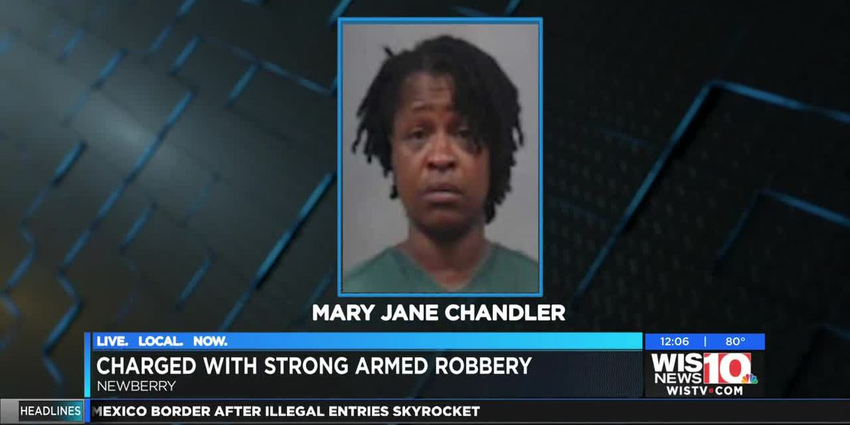 One charged in Newberry strong armed robbery