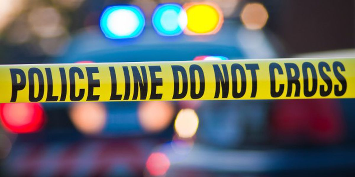 CPD: Pedestrian struck, killed early Wednesday may have been in roadway unlawfully