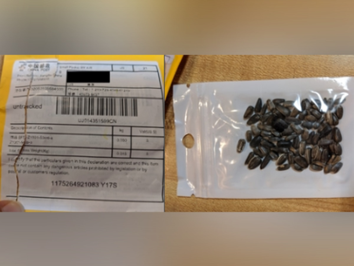SC officials warn of possibly harmful seed packages in your mail