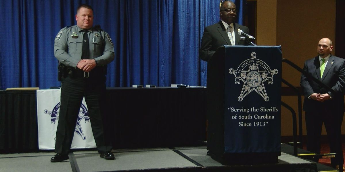 This hero deputy was seeking a hit-and-run suspect. Instead, he saved a life.