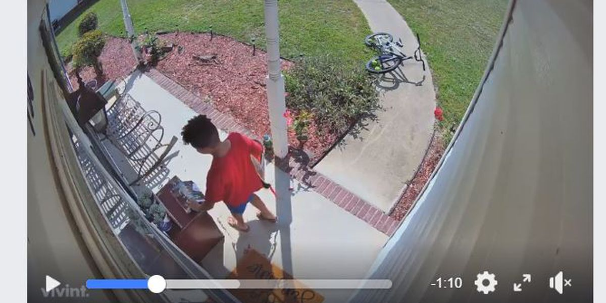 'Ding dong!' Hilarious kid follows instructions when doorbell is broken