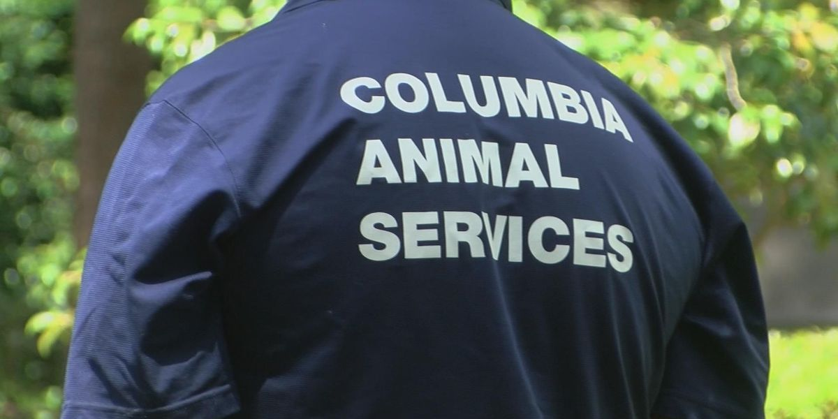 Columbia neighborhood unnerved after instances of animal torture, abuse