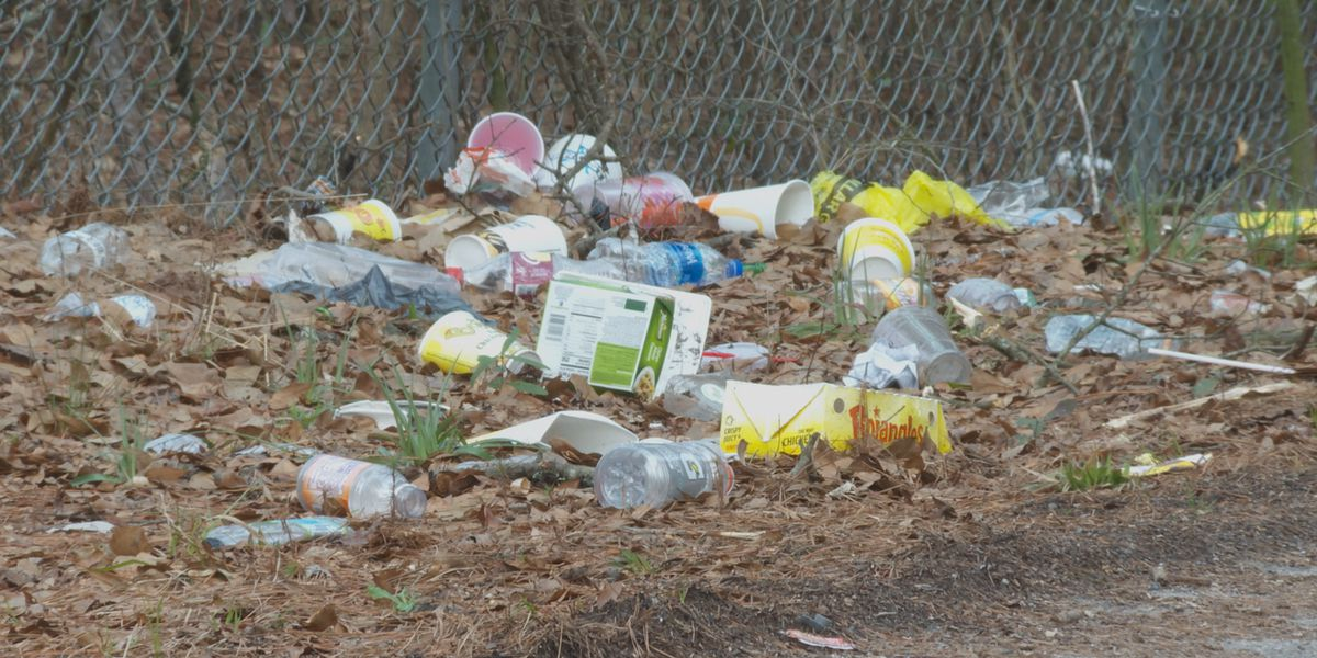 More litter is popping up on SC roads. Here's why and what's being done.