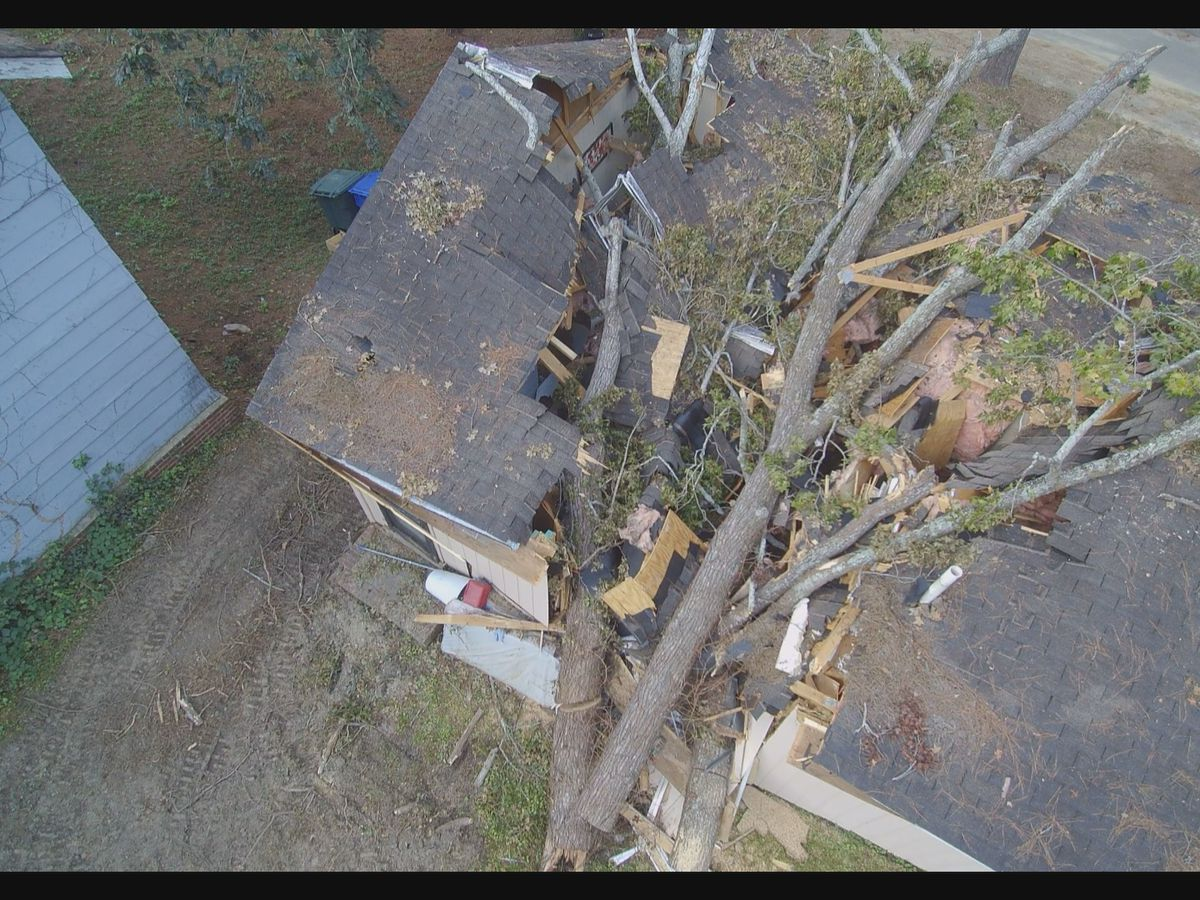 'It sounded like a bomb and felt like an earthquake,' Midlands family describes tree falling on their house during Michael