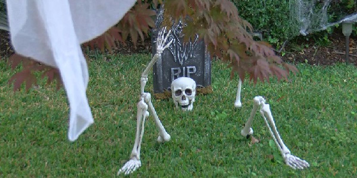 Family buys 46 pounds of candy for Halloween in Elmwood Park