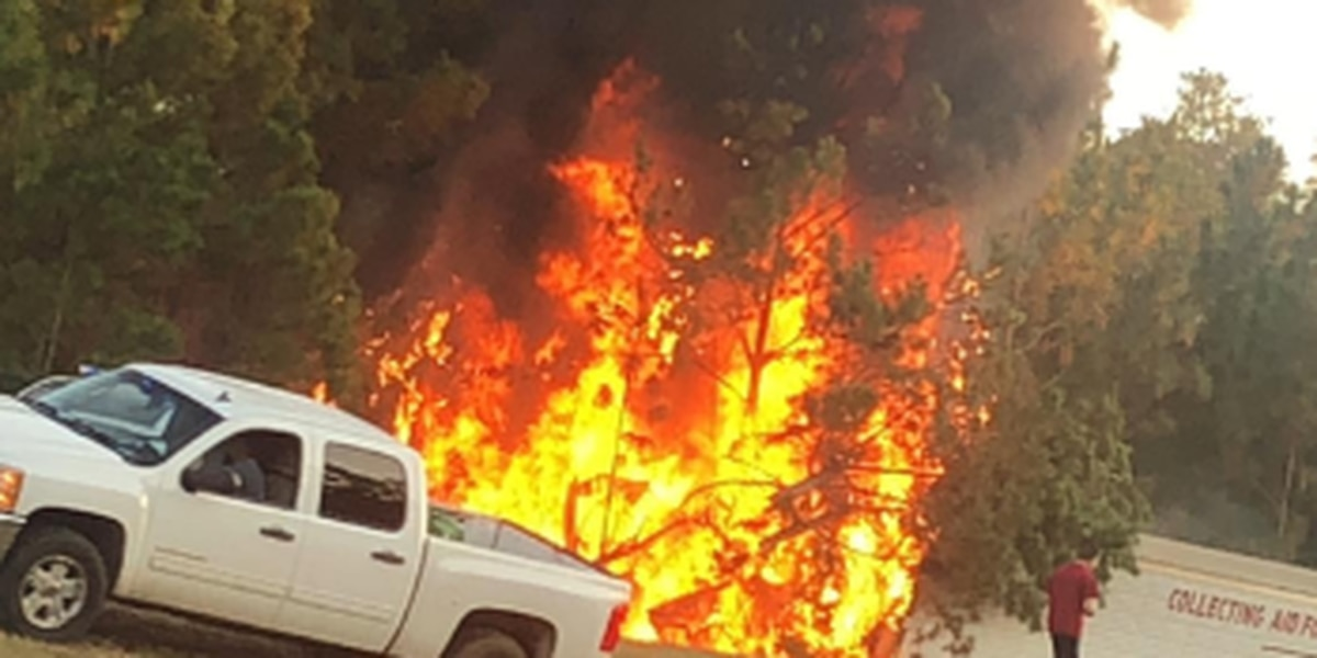 Lexington Co. Coroner identifies individual killed in fiery crash on I-20 East