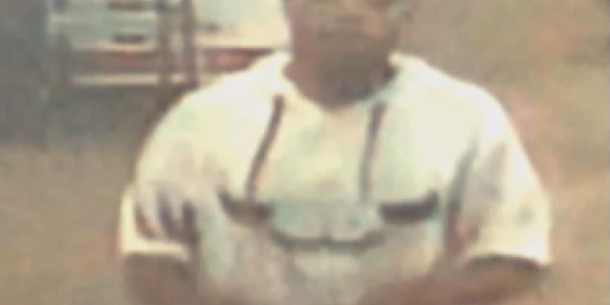 Deputies need help identifying two wanted for stealing gun in burglary