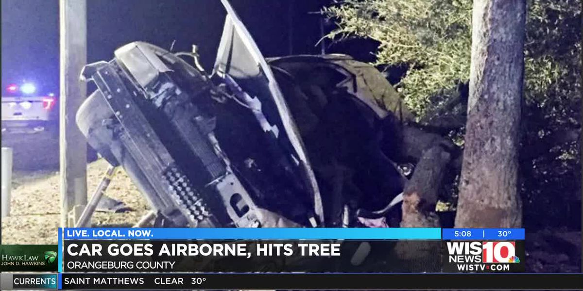 Car goes airborne, hits tree