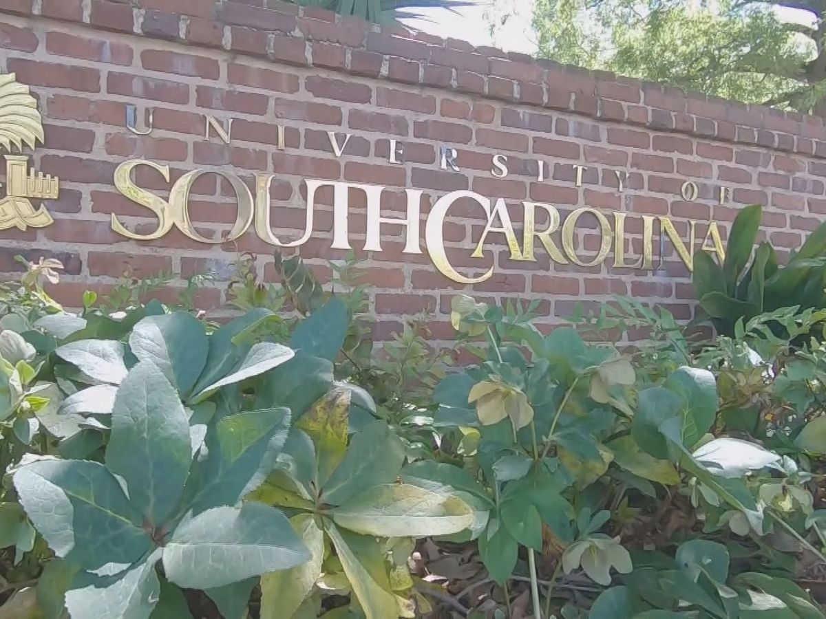 UofSC reports fewer than 100 active COVID-19 cases on campus