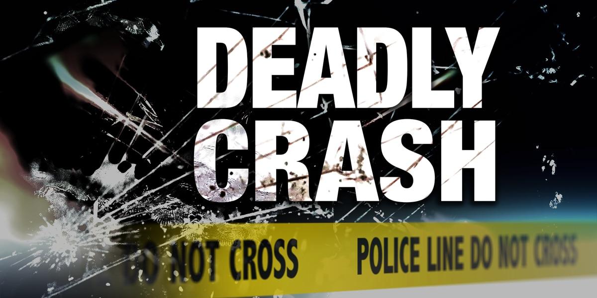SCHP: 4-car vehicle collision leaves 3 injured, 1 dead near S.C. Farmer's Market