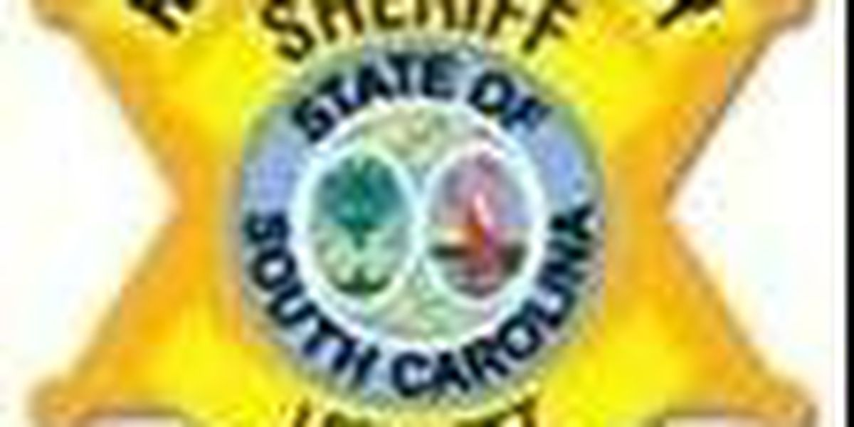 RCSD 'showing love' for Valentine's Day to Lower Richland Co. neighborhood