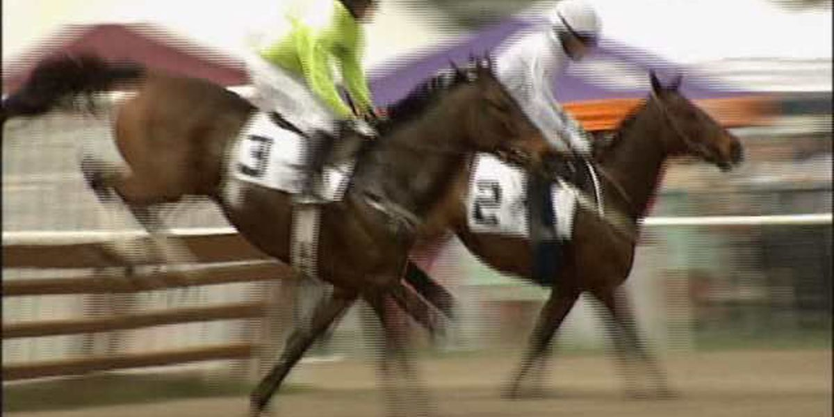 Thousands expected in Camden for Carolina Cup