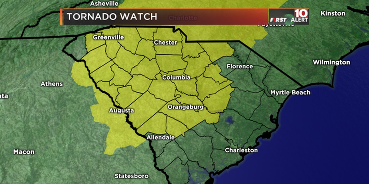 FIRST ALERT: Downed trees reported across the Midlands; tornado watch in effect until 6 p.m.