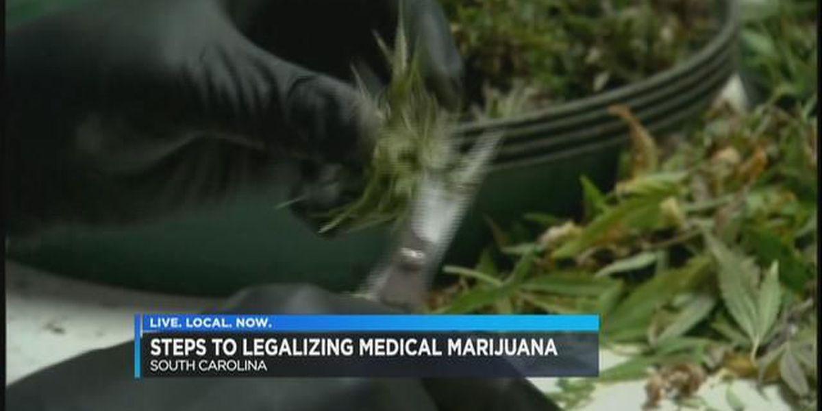 Medical marijuana advocates encouraged by new SC hemp law