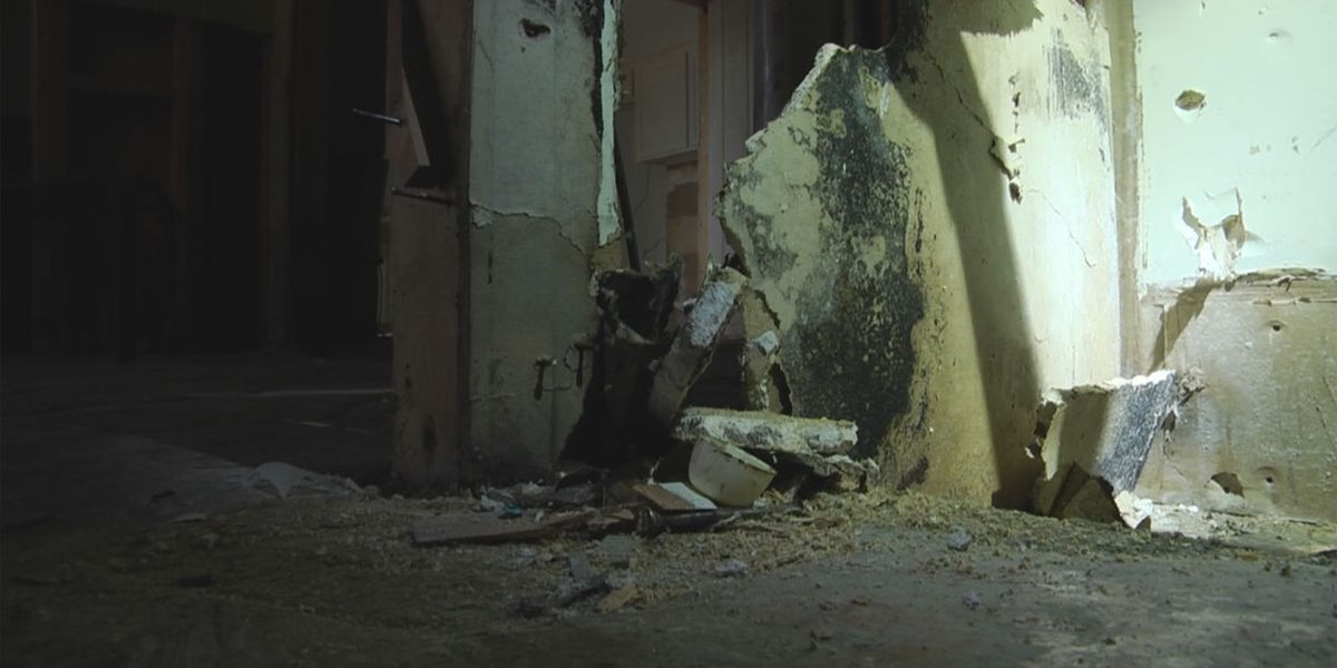 Panel of lawmakers studying mold remediation in South Carolina