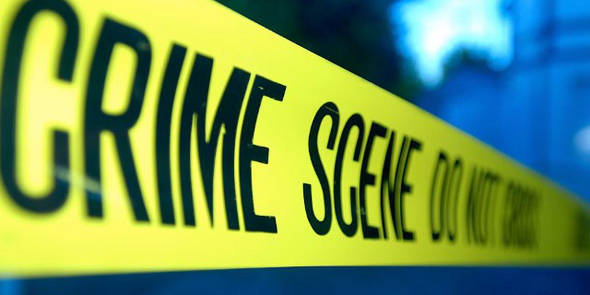 Coroner identifies 10-year-old girl killed in Hanahan homicide