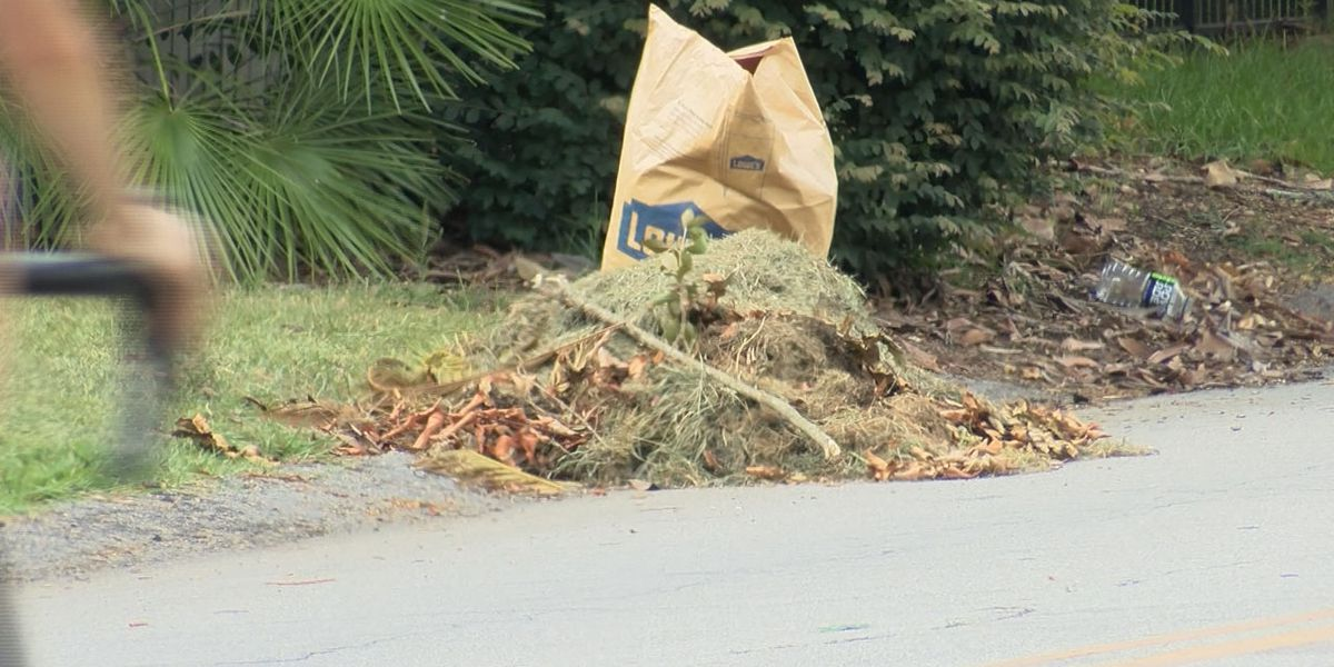 Yard clippings, debris left sitting curbside for weeks in Columbia neighborhood