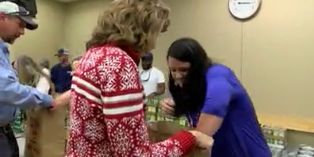 SCE&G employees give bags of food, gifts to families in need